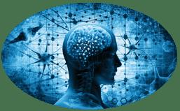 le neurofeedback est une technique d'autorégulation du cerveau