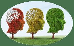 Le Neurofeeddback une méthode douce et naturelle
